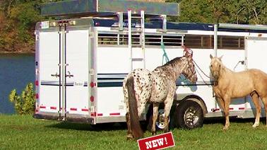 Hayrak Storage System Hay Rack Horse Trailer Storage